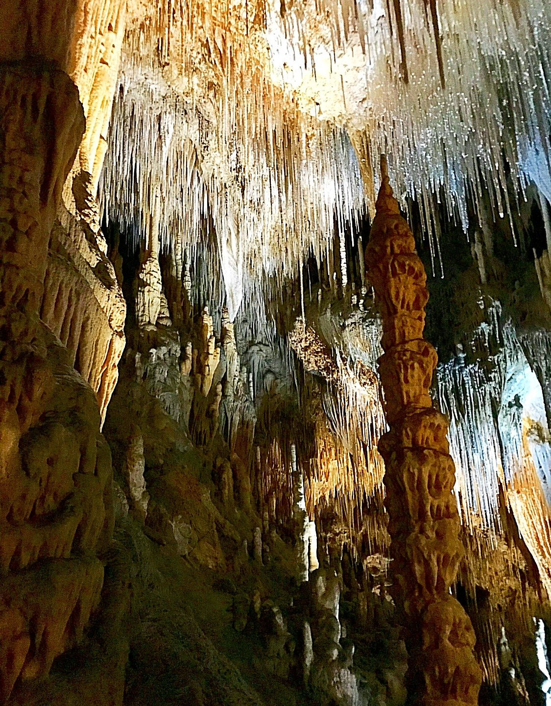 Hasting Caves and Thermal Springs — Тасмания 2018 — Блог о путешествиях Сергея Чеботова