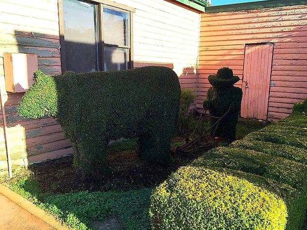 Railton, Town of Topiary — Тасмания 2017 — Блог о путешествиях Сергея Чеботова