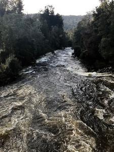 Река Мерсей — Тасмания 2018 — Блог о путешествиях Сергея Чеботова