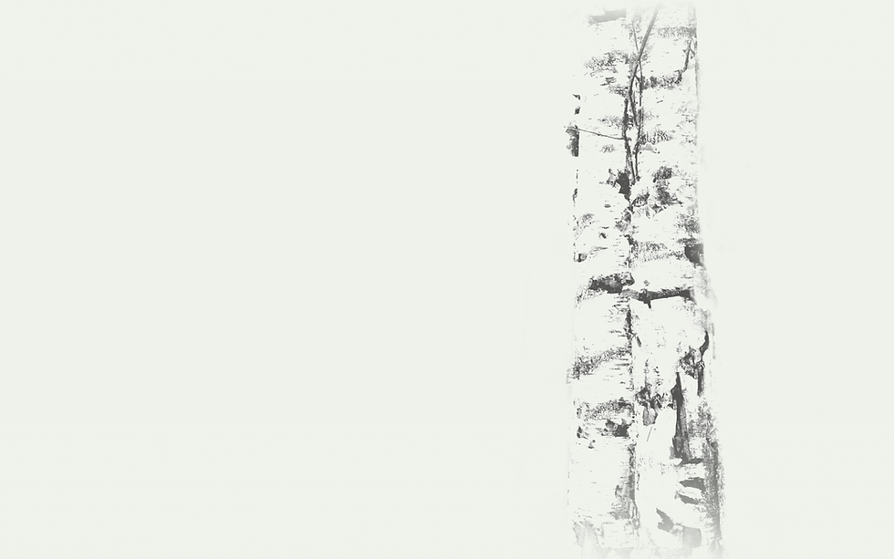 satis-main-bg-russian-birch.png