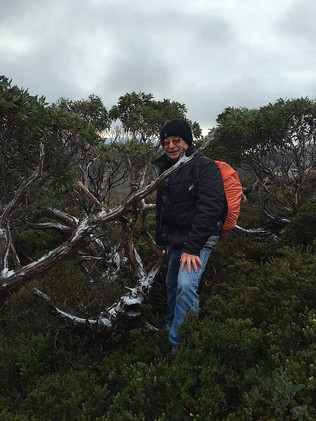 Кредел Маунтин — Тасмания 2017 — Блог о путешествиях Сергея Чеботова