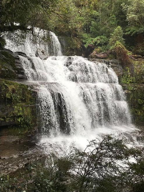 Нижний каскадный водопад Liffey Falls — Тасмания 2018 — Блог о путешествиях Сергея Чеботова