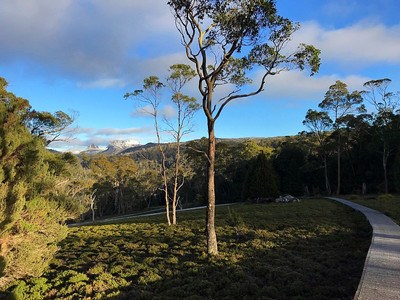 Cradle Valley Boardwalk — Тасмания 2018 — Блог о путешествиях Сергея Чеботова