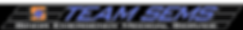 TEAM SEMS Ambulance logo_edited.png