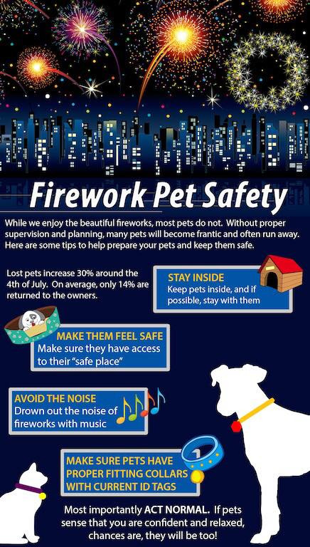 Fireworks & Dogs Infographic