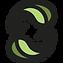 Turning Leaf Logo FINAL COMPS-01 (2).png
