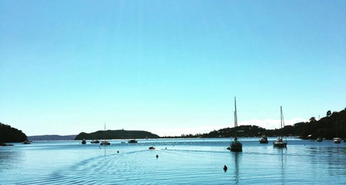 Hiking in Kur-ring-gai Chase National Park – A Series of Unfortunate Events