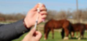 vaccine-slider.jpg