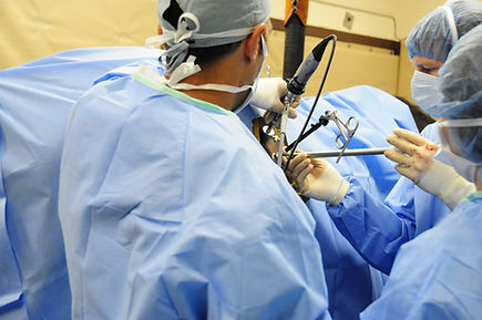 Laparoscopic surgery, kleider veterinary services