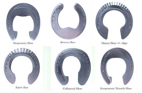 Therepeutic horseshoes