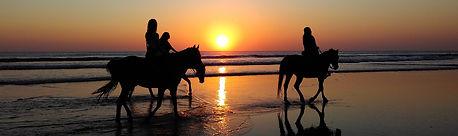 community horse ride