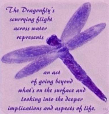 dragonfly%25252520flight_edited_edited_edited_edited.jpg