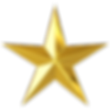 gold star copy nobg.png