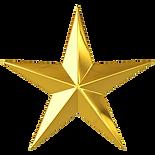 gold star copy nobg.png