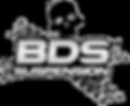 BDSlogo-vert-silver.png