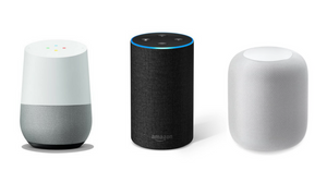 Voice Assistant Devices