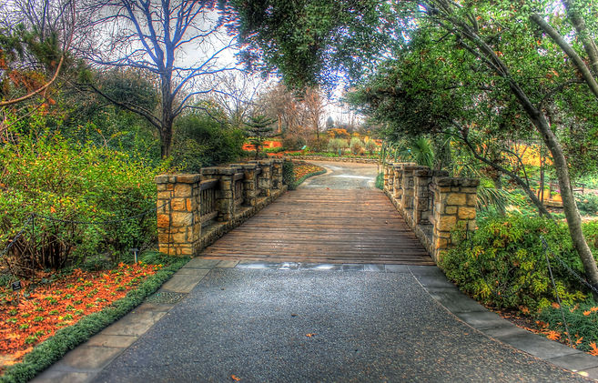 dallas-texas-bridge-walkway-arboretum.jp