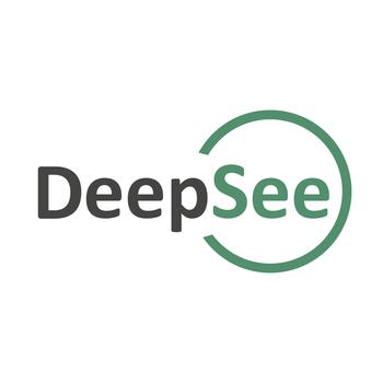 Logo til Deepsee