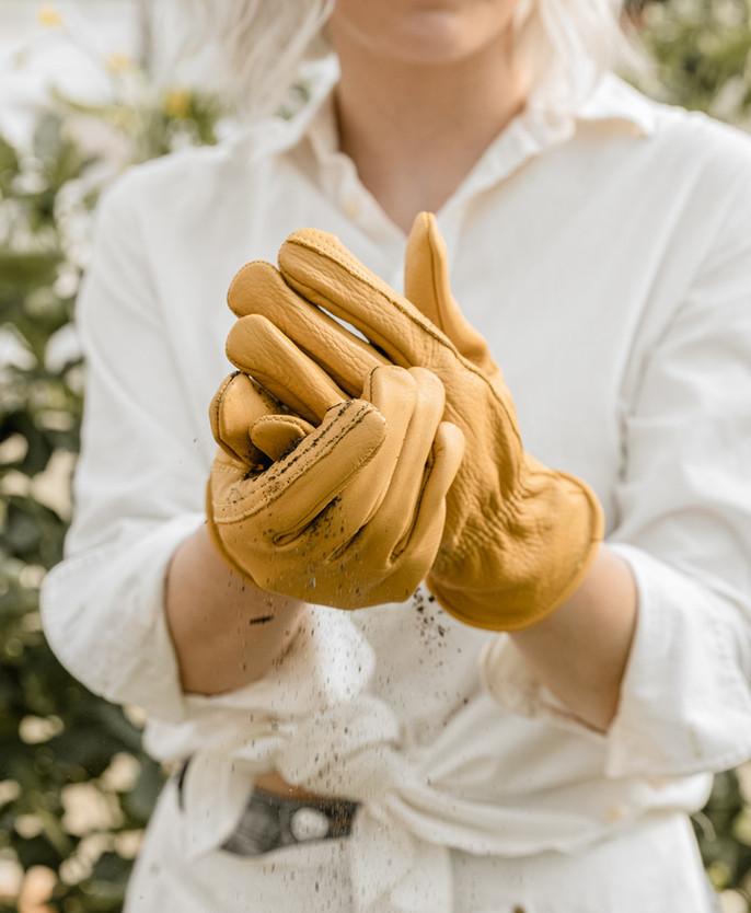 _Gloves1.jpg