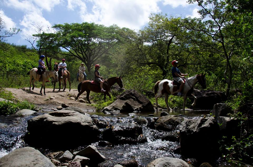 Guanacaste Horsback Riding