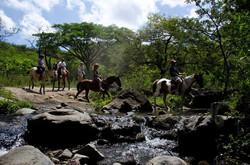 Guanacaste Horsback Riding