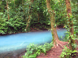 Blue River Costa Rica