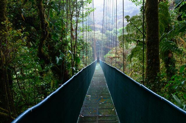 Monteverde Tour Costa Rica