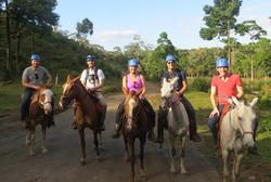 Blue River Hourseback Riding