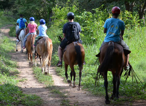 Horseback Riding Guanacaste