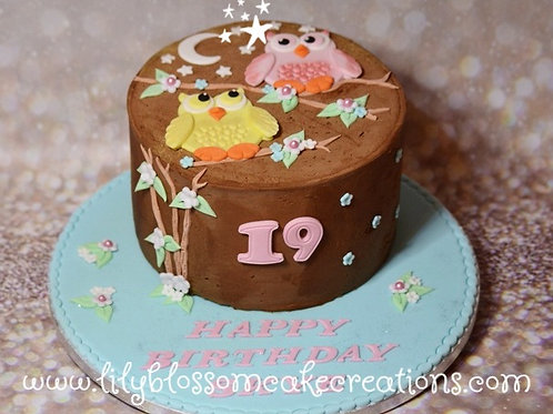 Owl birthday cake Liverpool Merseyside Lily Blossom Cake Creations