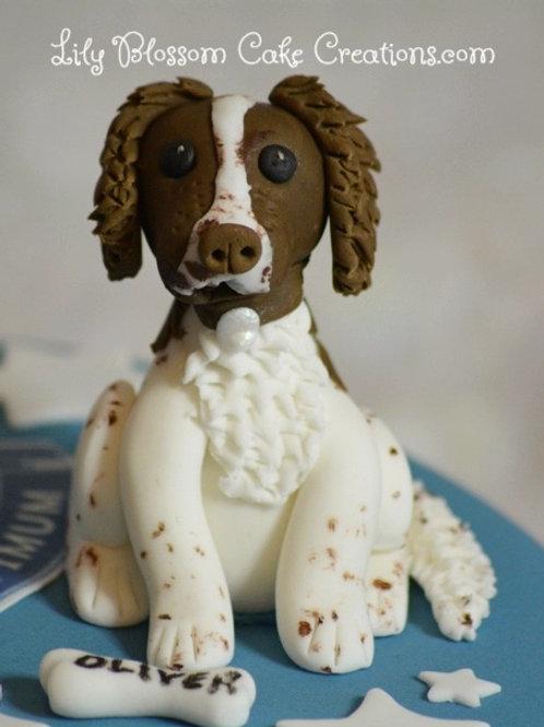Springer Spaniel Cake / Lily Blossom Cake Creations / Liverpool / #liverpool #cakesliverp