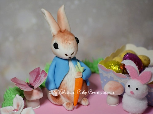 Peter Rabbit Birthday Cake / Lily Blossom Cake Creations / Liverpool