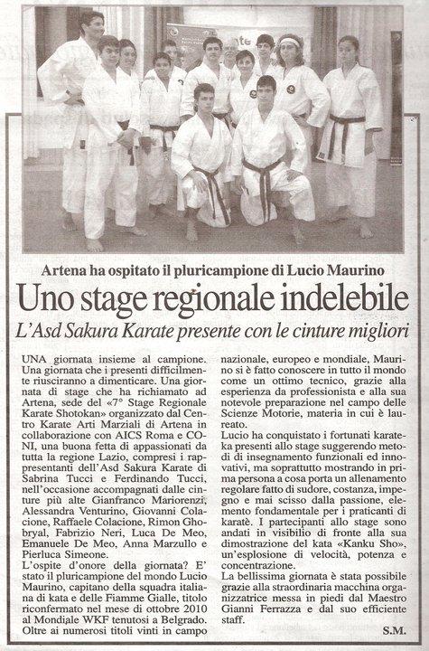 2011.01 ARTENA MAURINO