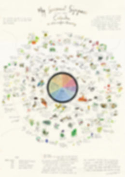 SEASONAL FOOD CALENDAR JPG FOR WEB.jpg