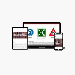 website rijsdijk.jpg