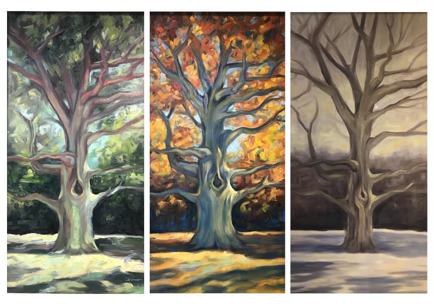 Majestic Oak I, II, and III by Chandra Rogers