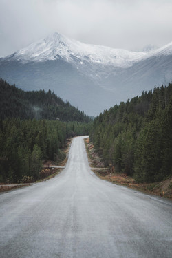 Wilderness Roads