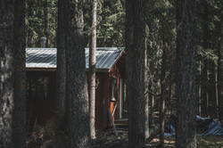 An abandoned Trapper cabin in the Woods