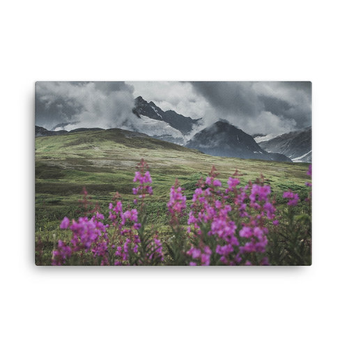 Mountainscapes and Fireweed