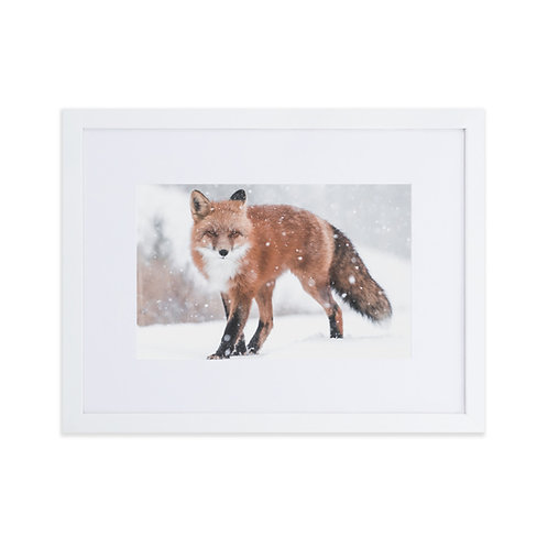 The Fox and the Snow