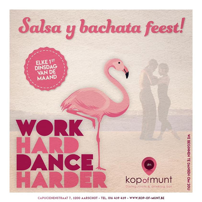 Work Hard Dance Harder, Aarschot
