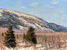 Acadia Tarn