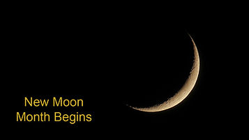 003-New-Moon.jpg