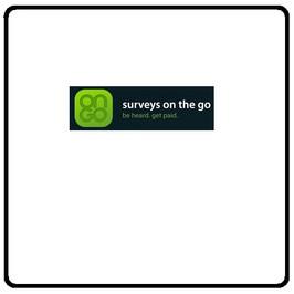 Surveys on the Go