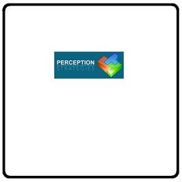 Perception Strategies