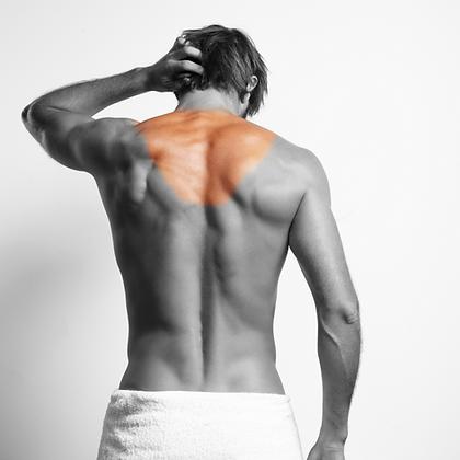 Upper Back - Men's LHR