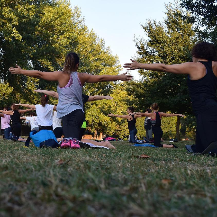 Yoga at Hartwood Acres