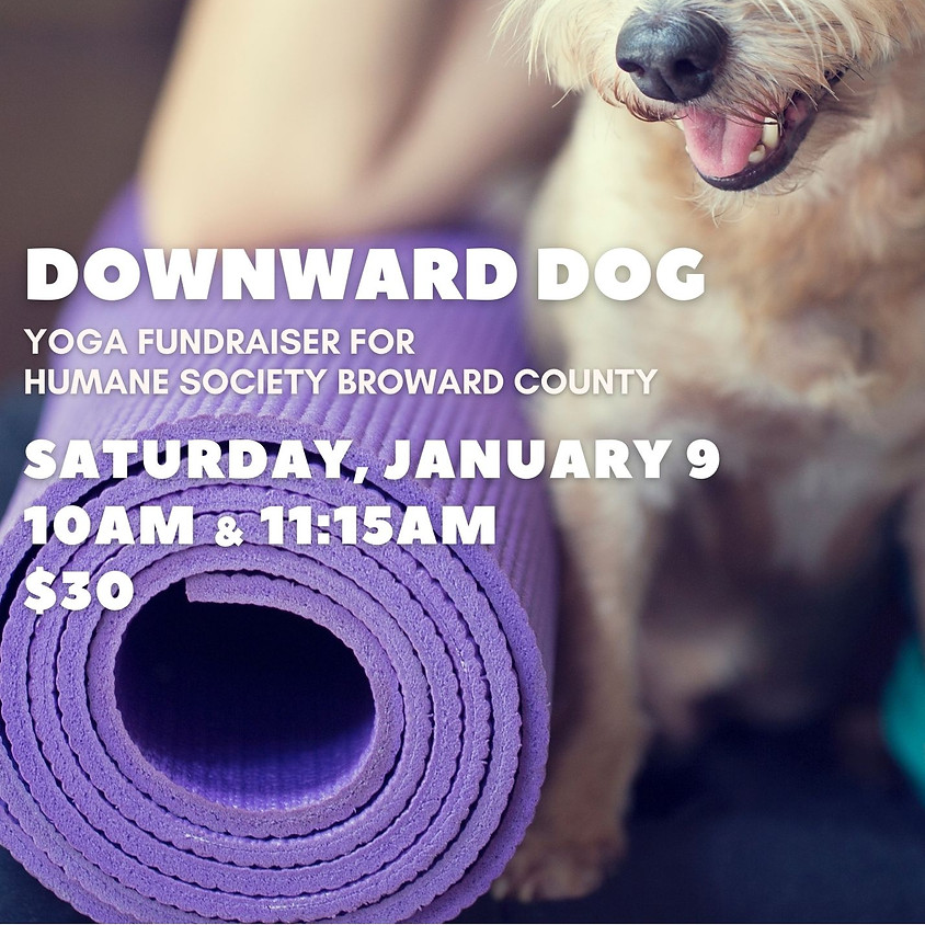 Downward Dog: Yoga for Humane Society Broward County
