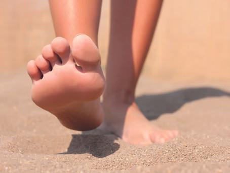 Gibt es einen Muskelhalteapparat im Fuß-