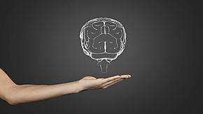 brain-stem-truncus-encefali-digital-pres